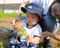 Bコース: 収穫体験で有機野菜を楽しむ!シンプルコース
