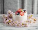 🎂 ANNIVERSARY CAKE|8品