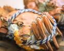 カニ三昧‼3種の蟹を余すことなく堪能できる【活け松葉蟹とセコ蟹 上海蟹の食べ比べコース】