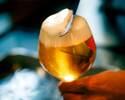 【イタリアン前菜5品+自慢のパスタのライト新年会コース!】2時間直輸入クラフトビール5種飲放題とスパークリングワイン、カクテル全60種