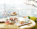 【Rooftop Terrace】Sakura Afternoon Tea in a Rooftop Igloo (4 people only)