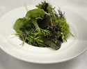 【テイクアウト】梶谷農園のハーブ野菜サラダ ¥1,200