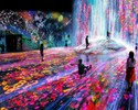 TeamLab Borderless + Seascape Lunch Course [Saturday, Sunday and public holidays]
