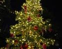 クリスマスディナーコース(窓際確約)