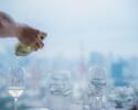 10/20スタート[LUNCH]<窓際席確約>コース+スパークリングワイン&デザート&カフェ