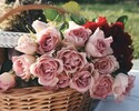 お花のプレゼント5,500円
