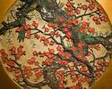 【平日限定!乾杯ドリンク付き】文化財で四季のお花見ランチセット【相部屋プラン】