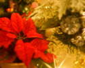 クリスマスディナー2021