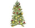 【クリスマスディナー ワインペアリング付き】Menu de Noël 2021